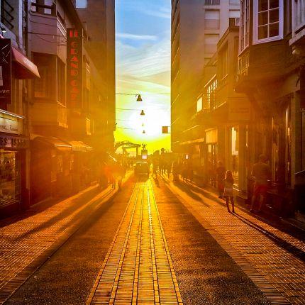 Die Zahl der Kleinhaushalte steigt, die Urbanisierung nimmt zu und der Internethandel boomt - doch welche Auswirkungen hat dies auf den Handel?
