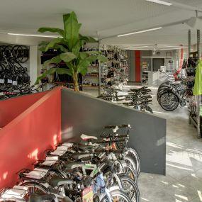 Bild von Fahrrad am Bächle