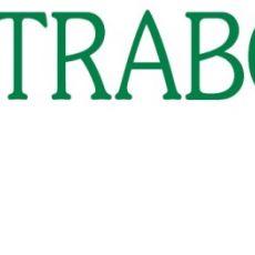 Bild/Logo von STRABO GmbH & Co. KG in Bonn