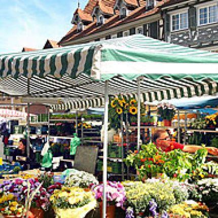 Gärtnerei Schanbacher auf dem Schorndorfer Wochenmarkt in Schorndorf, Marktplatz