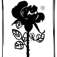 Bild/Logo von ROSE-HANDWERK Vertriebs-GmbH in Meschede