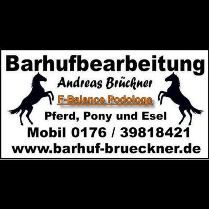 Barhufbearbeitung Andreas Brückner in Zilshausen, Kapellenstraße 28