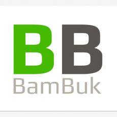 Bild/Logo von Anton Simonov Bambuk Dreiräder und Tandem-Dreiräder in Bühl