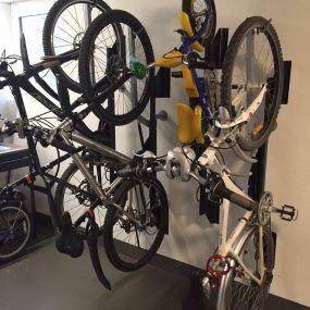 Bild von Bicyclejack UG
