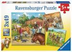RAVENSBURGER 09237 Puzzle Mein Reiterhof